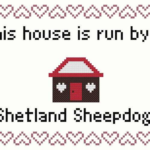 Shetland Sheepdog, This house is run by