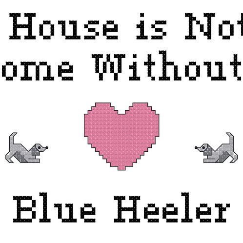 Blue Heeler, A House is Not a Home Without