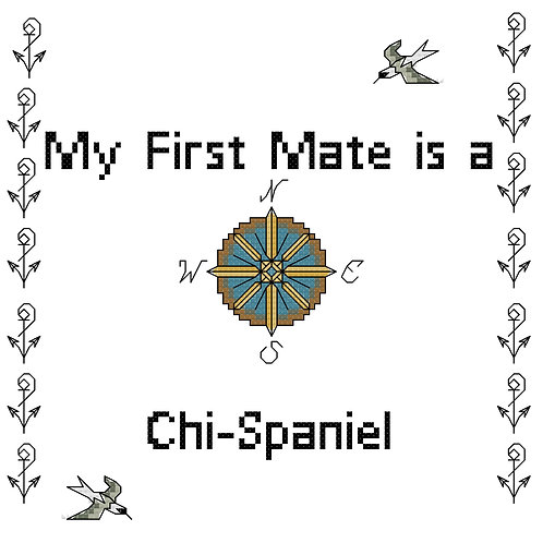 Chi-Spaniel, My First Mate is a