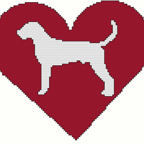 American Foxhound in Heart