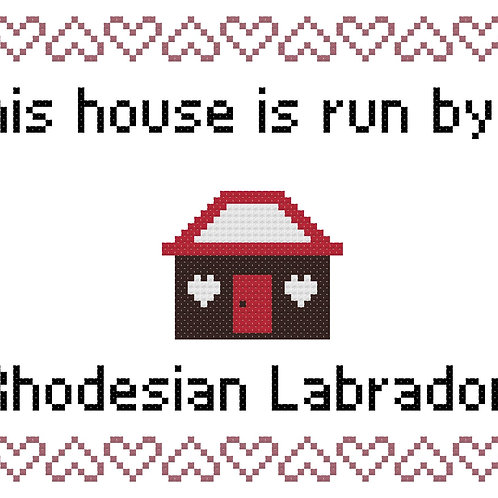 Rhodesian Labrador, This house is run by