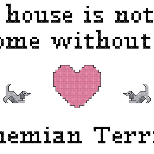 Bohemian Terrier, A House is Not a Home Without