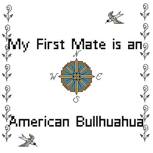 American Bullhuahua, My First Mate is a