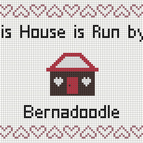 Bernadoodle, This house is run by