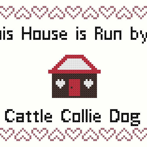 Cattle Collie Dog, This house is run by