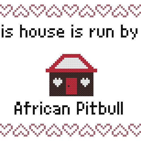 African PitBull, This house is run by