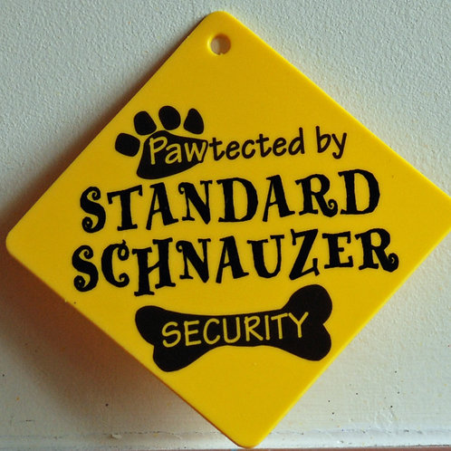 Standard Schnauzer, Pawtected by