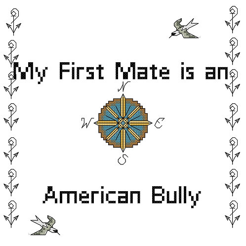 American Bully, My First Mate is a