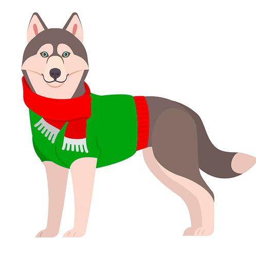 Alaskan Malamute Christmas Dog