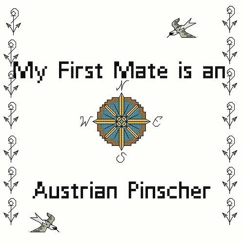 Austrian Pinscher, My First Mate is a