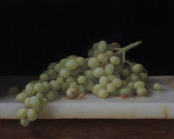 Snail and Grapes
