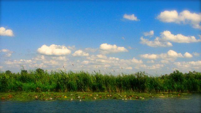 More Dutch Clouds