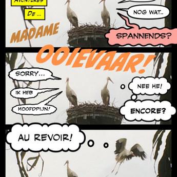 Les avontures de Madame Ooievaar!