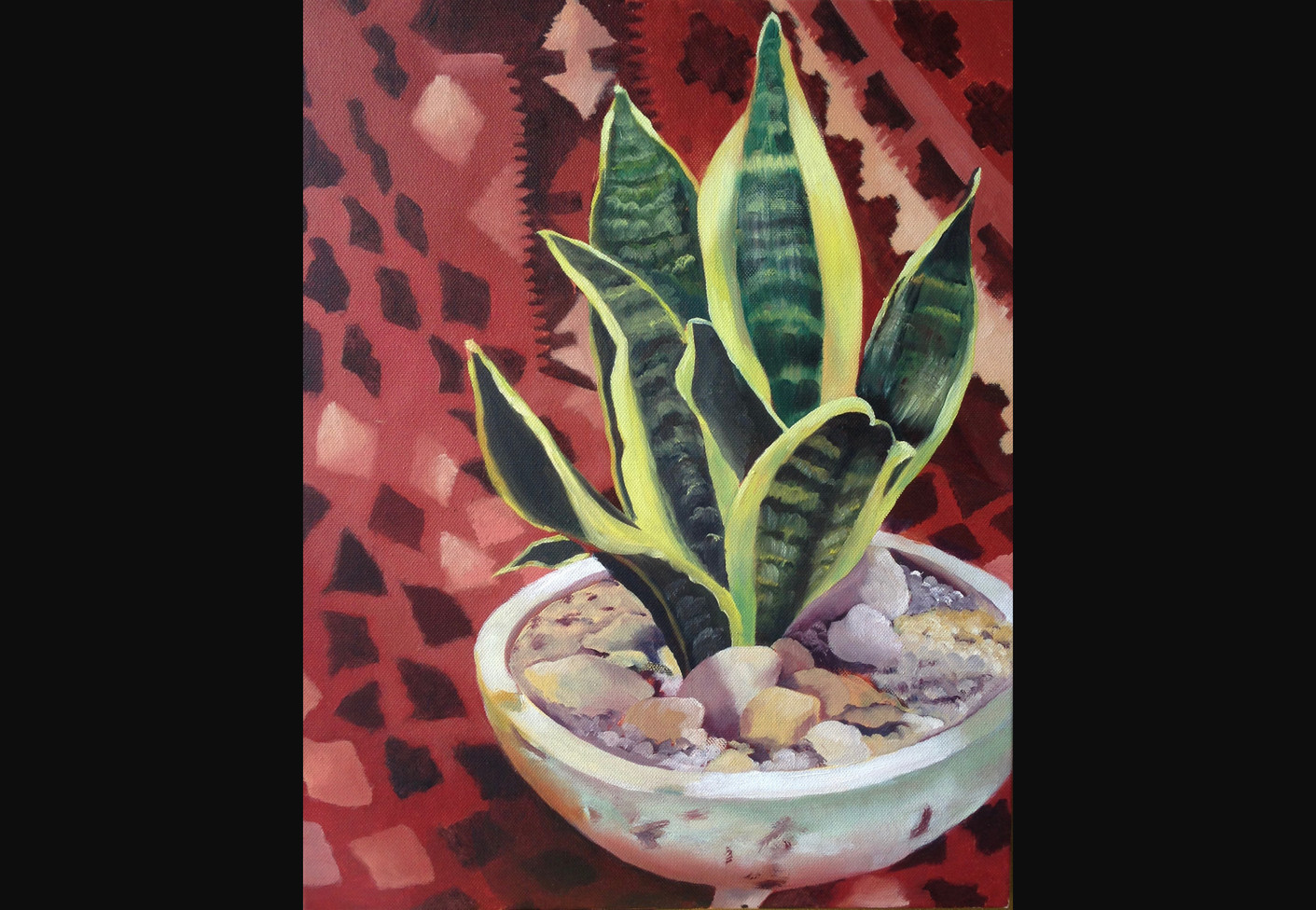 Mexican succulent