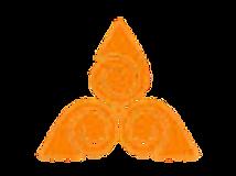 Logo LCR fond transparent sans texte.png