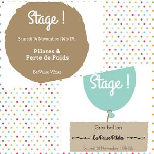 Stages de Novembre