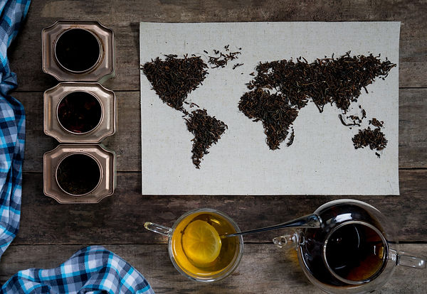 map of the world, lined with tea leaves
