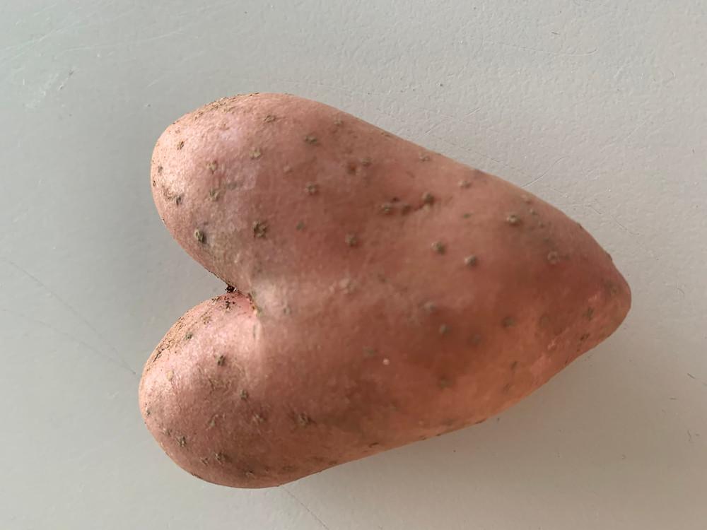 Ein gefundenes Kartoffelherz für die TSR