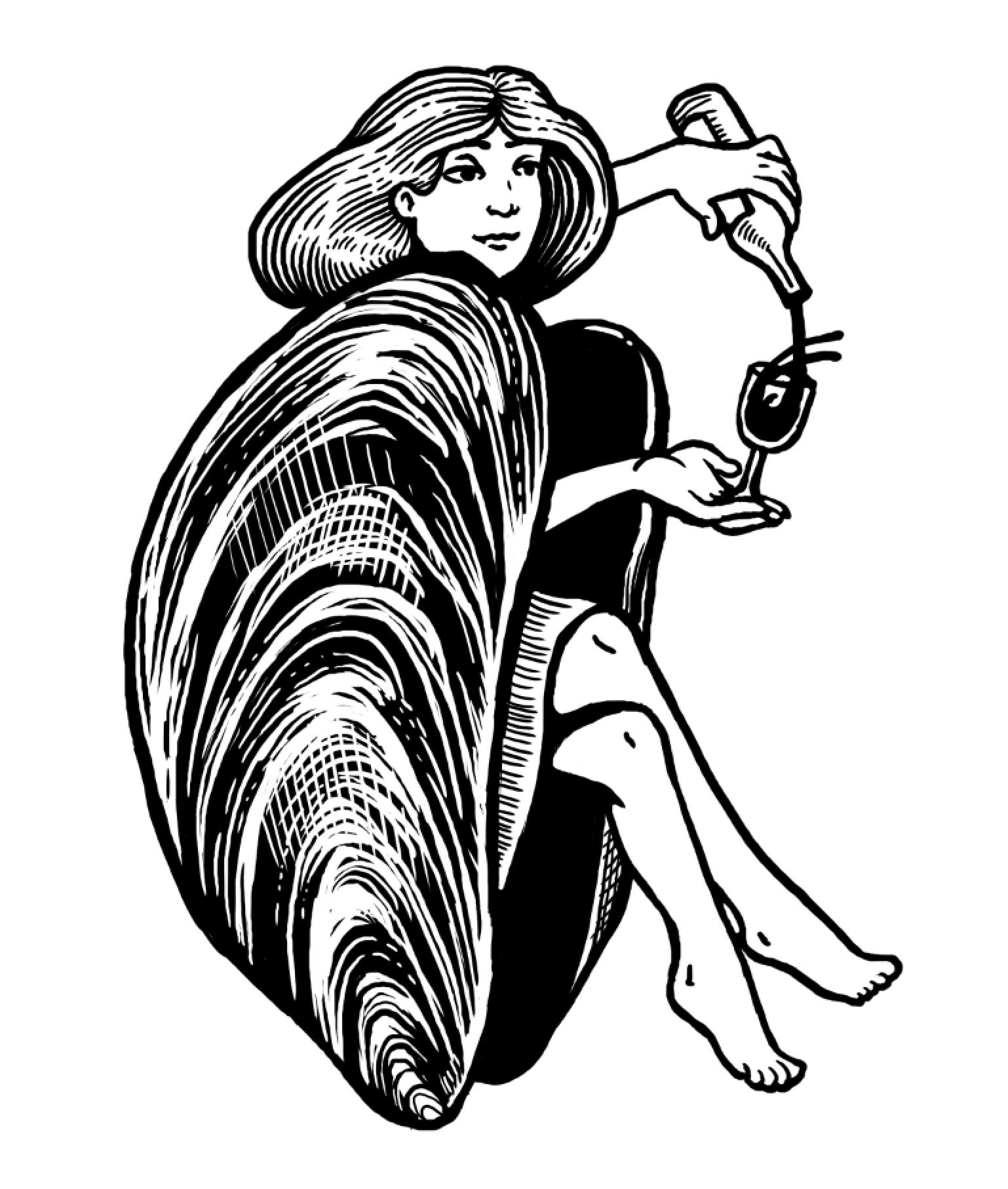 Logo - Sketch Clam Shell 2