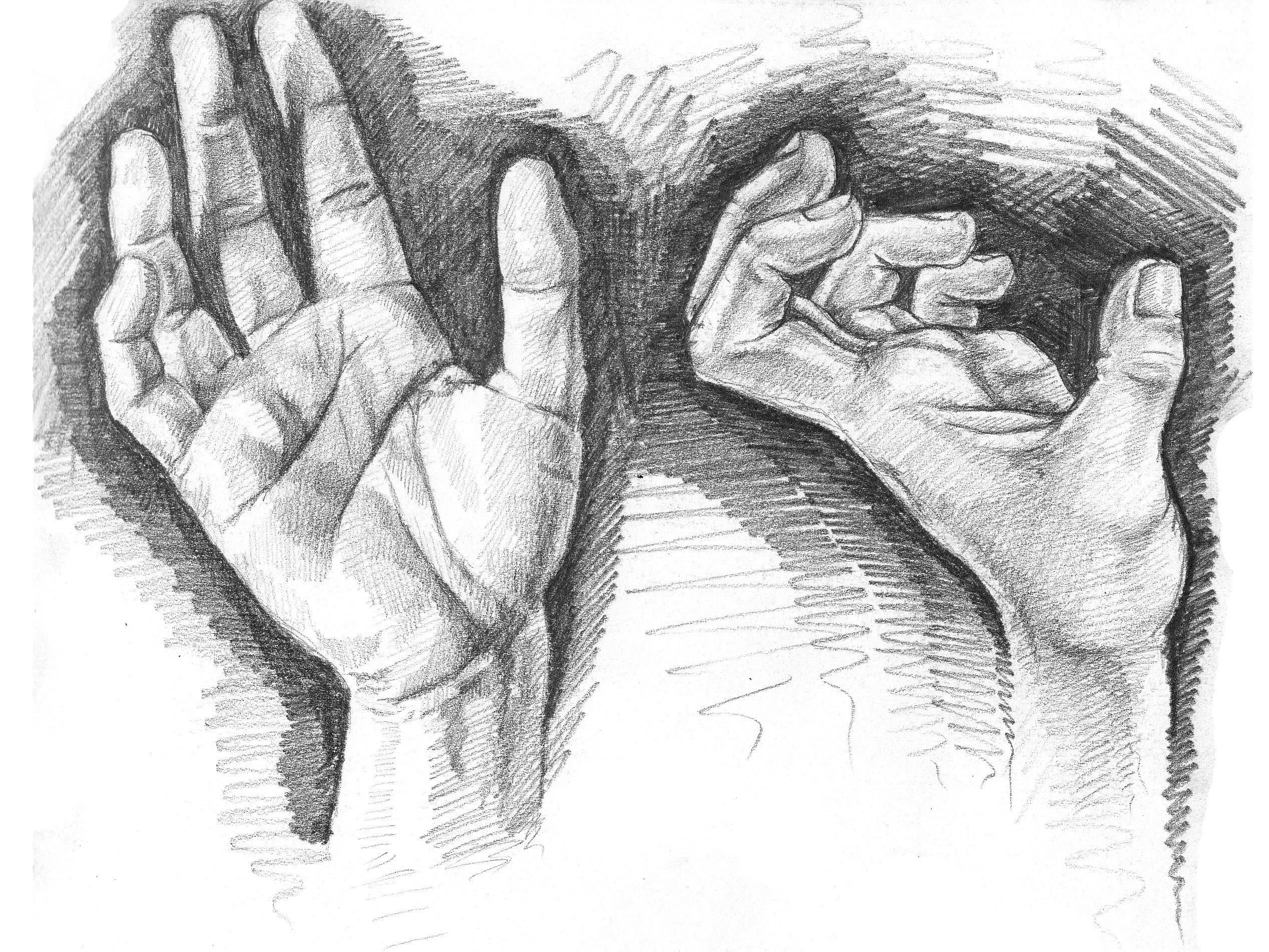 Hand Study