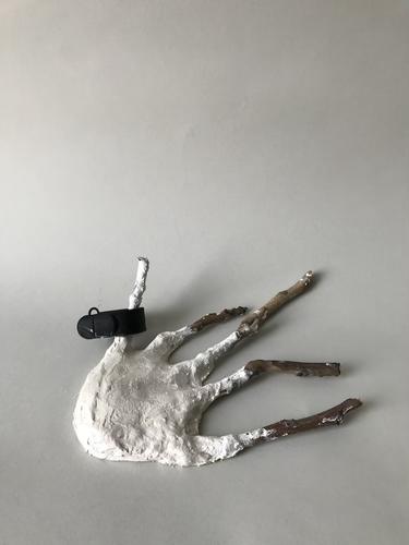 IMG_5737_modroc hand.HEIC