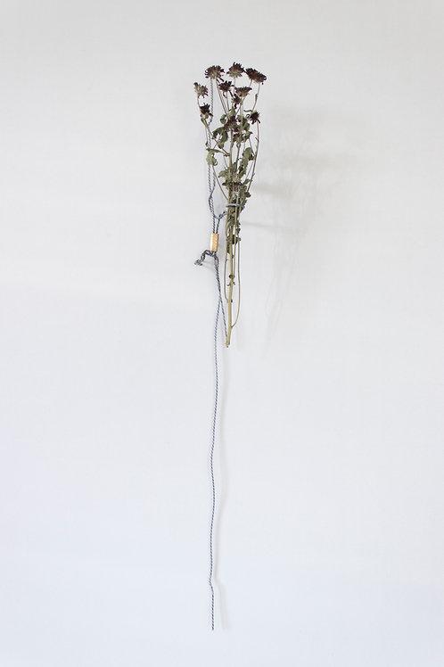 JAMIE KANE, Wire vase (2020) #7
