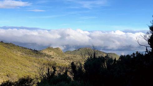 Ugnada - Mount Elgon 4.jpg