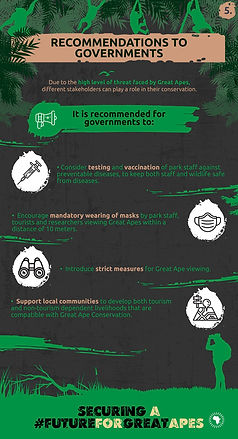 GreatApeCampaign-Infographic-05 (1).jpg