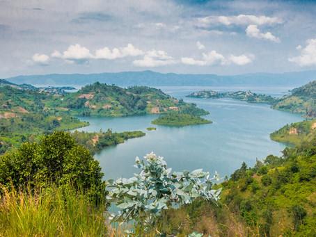 Feb 2021 Rwanda safari COVID-19 update