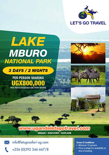 Domestic Safari - LMNP.jpg
