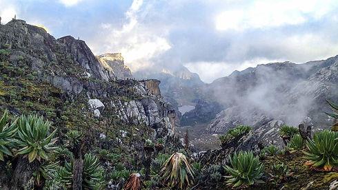 rwenzori-mountains1.jpg