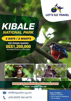 Domestic Safari - KFNP.jpg