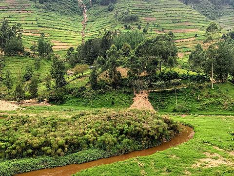 Uganda - Southen Bwindi Landscape.jpg