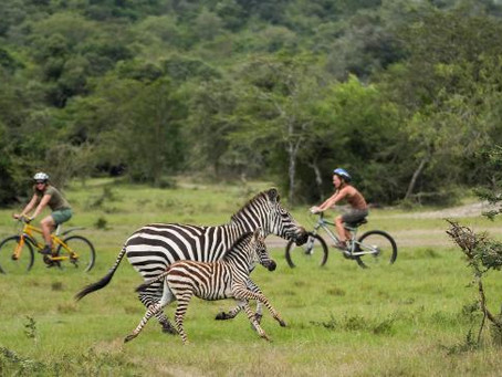 Cycling Safaris Uganda Style