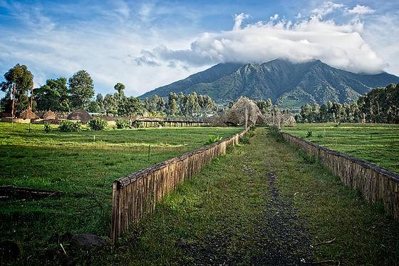 Rwanda - Volcanoes National Park.jpg