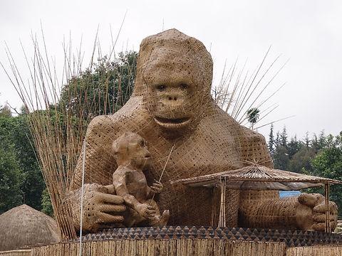 Rwanda - Kwita Izina (1).jpg