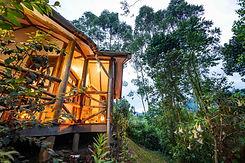 Gorilla Safari Lodge.jpeg