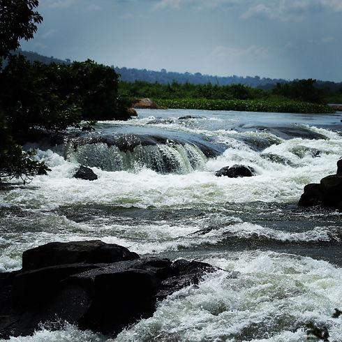 Uganda - Small rapids on the River Nile.
