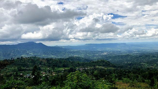 Uganda - Sasa River Trail.jpg