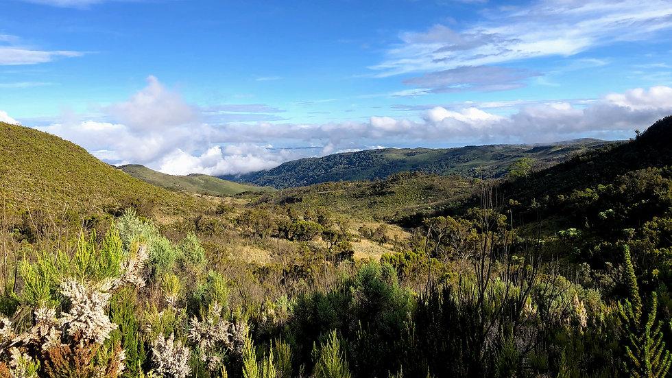 Uganda - Mount Elgon National Park.jpg