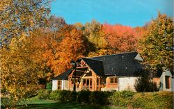Sallle_des_fetes_automne