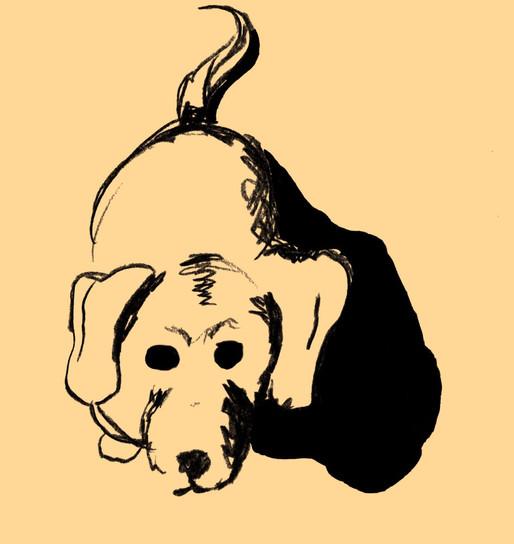 EDITORIAL Illustration_Hund1_edited.jpg