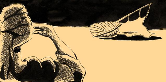 EDITORIAL Illustration_Schiff1.jpg
