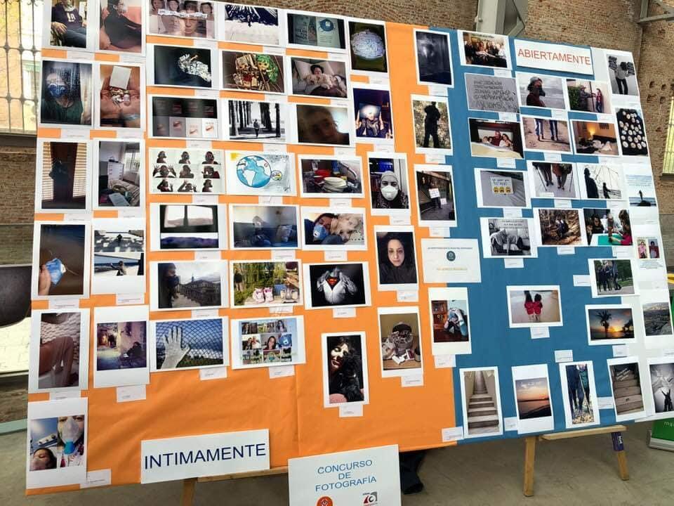 fotos en concurso1