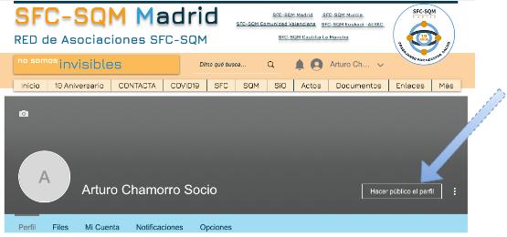 SFC Guia de acceso-Perfil.png