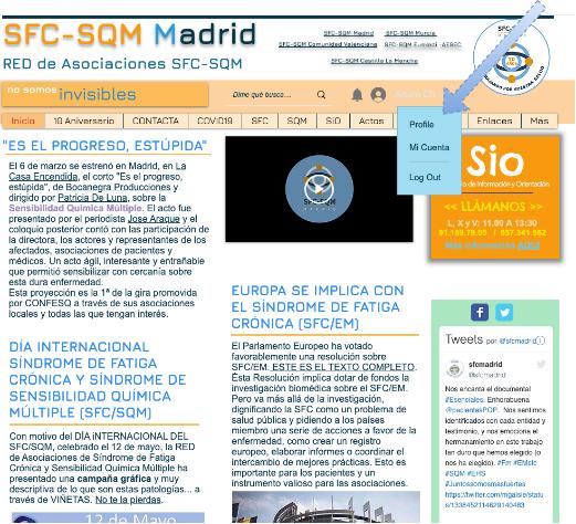 SFC Guia de acceso-Menu Perfil.png