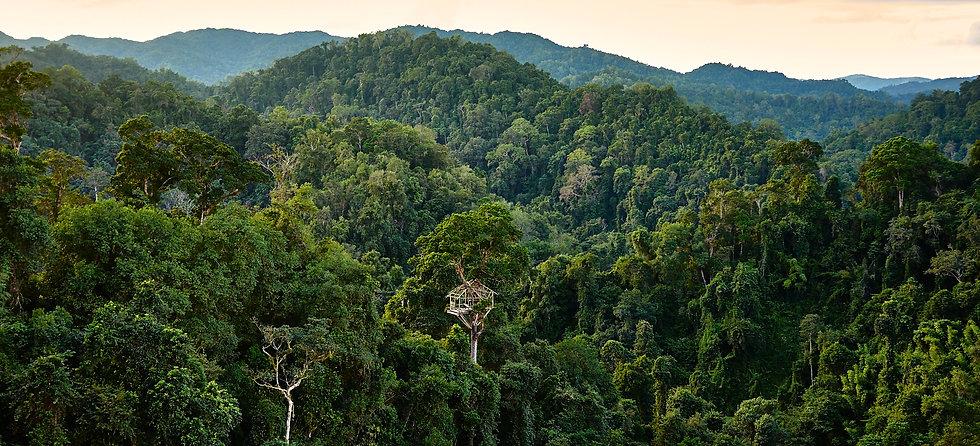 Laos15_HuayXai_DSCF8829.jpg