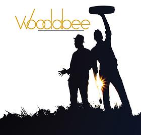 woodabee, woodabee music, voleurs d'eau, bertrand pierre, aly dialo, salavador, climat, eau