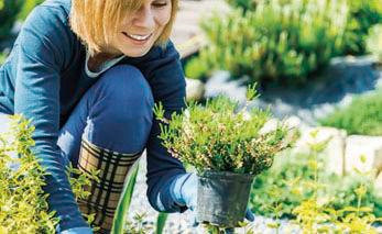 Gardening provides practical ways to stay healthy