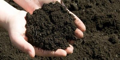 Soil, Soil, Soil